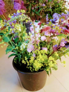 Developing a cutting garden - sustainable summer